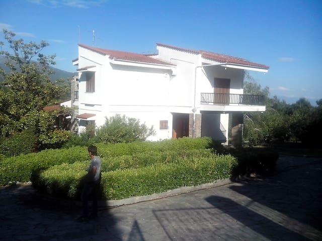 ΜΟΝΟΚΑΤΟΙΚΙΑ ΣΤΟ 5ΧΛΜ ΣΕΡΡΩΝ ΛΑΙΛΙΑ - Serres