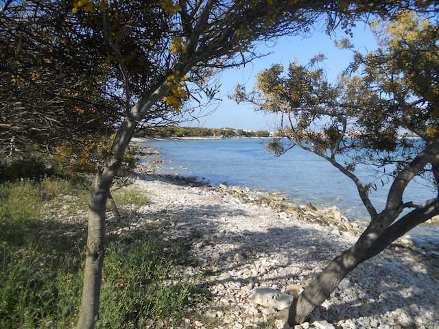 Cala Mandriola casa fronte isola Mal di Ventre - Mandriola - Loma-asunto