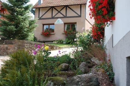"Bienvenue chez ""Bri'Gîte"" - Wangenbourg-Engenthal - Ev"