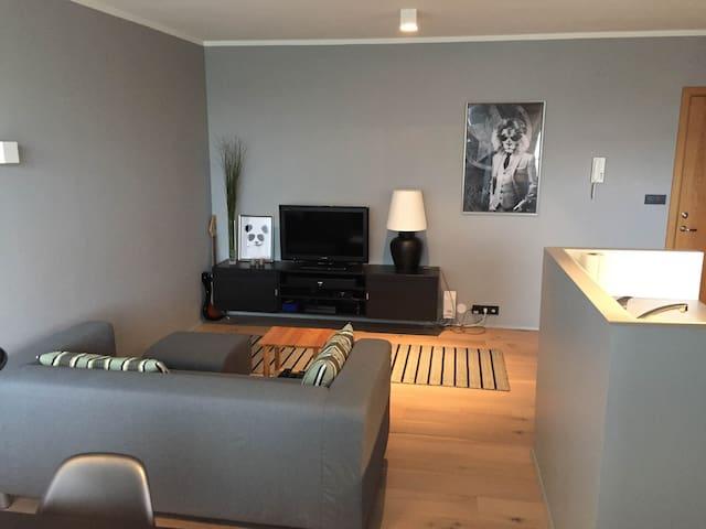 1 bedroom apartment near city centre - Reykjavík