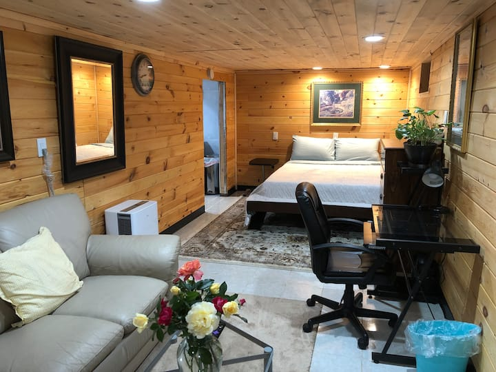 Log style studio in basement w/ private entrance.