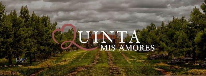 Quinta Mis Amores