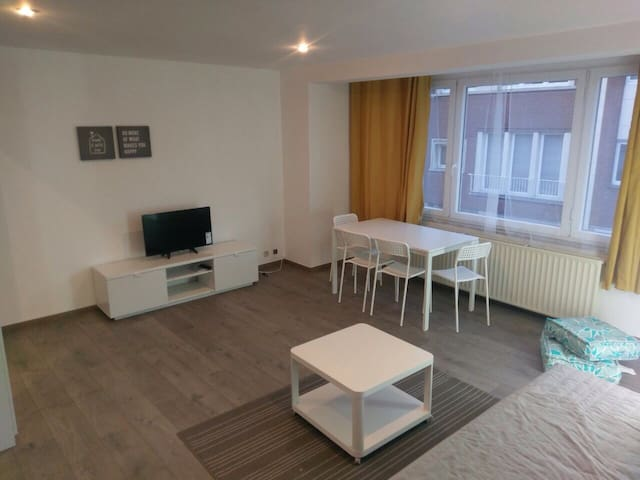 40Sqm private studio 1 or 2 pple - Watermael-Boitsfort - Apartment