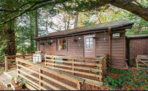 Log cabin in private woodland