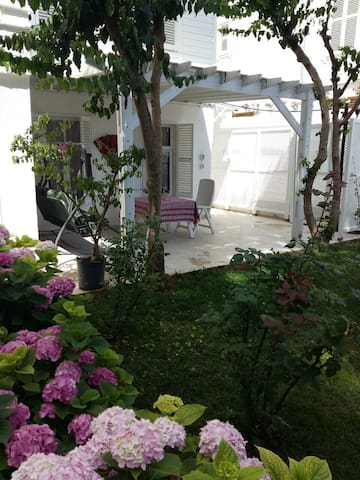 Peaceful historical house with garden and pool - Adalar - Casa