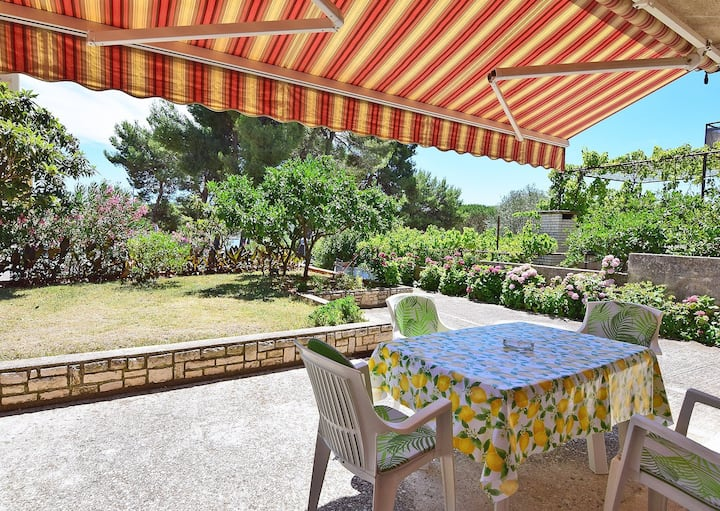 Great apartment 50 m from sea! (4+1)