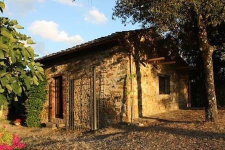 Kleines Zauberhäuschen auf Chiantihügel bei Siena - Pievasciata - Talo