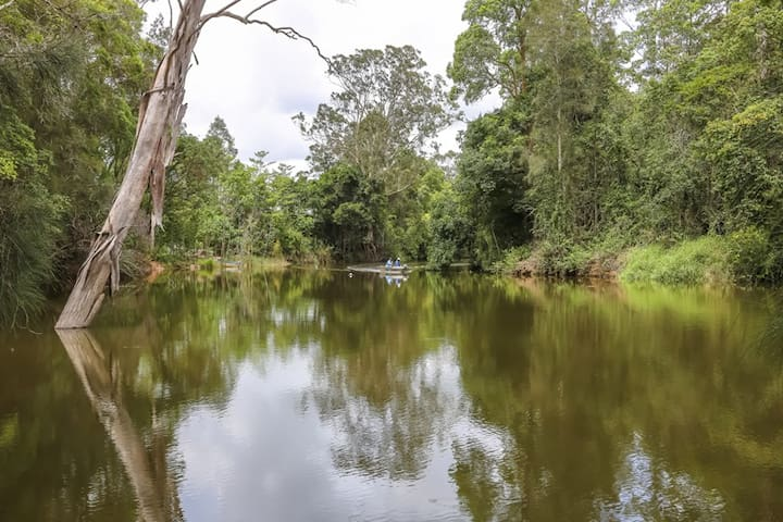 Sunshine Coast Camping by the river - Yandina - Namiot