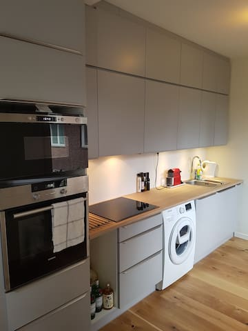 Newly renovated kitchen. Microwave oven, washing machine, coffe machine and all other amenities are available for the guests.