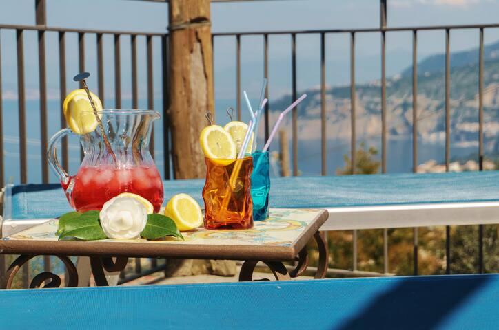 Villa Antonella - relaxing sea view - Sorrento  - House