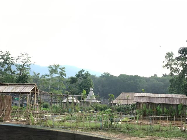 baibai at Thaimuang farm stay