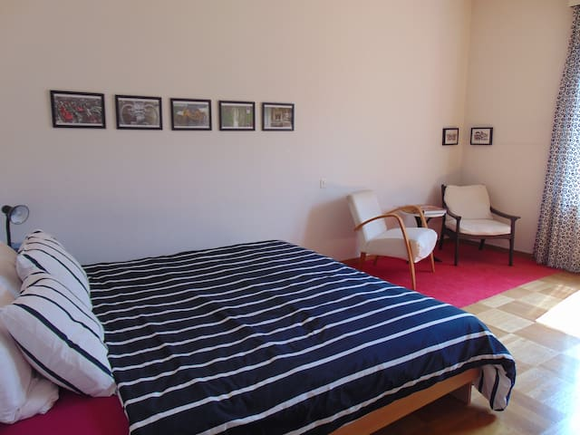 Spacious room near center and university