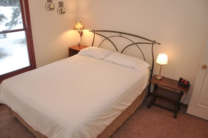 2nd bedroom has a queen bed