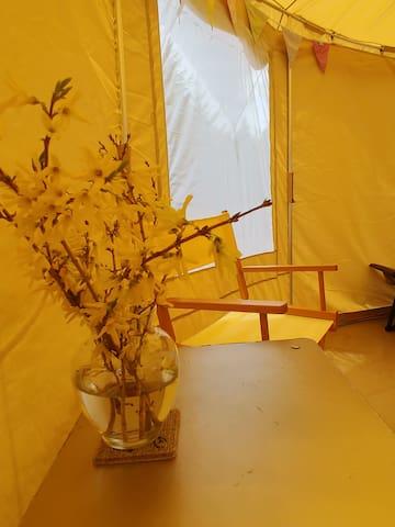 Woodland Oasis YURT style tent!
