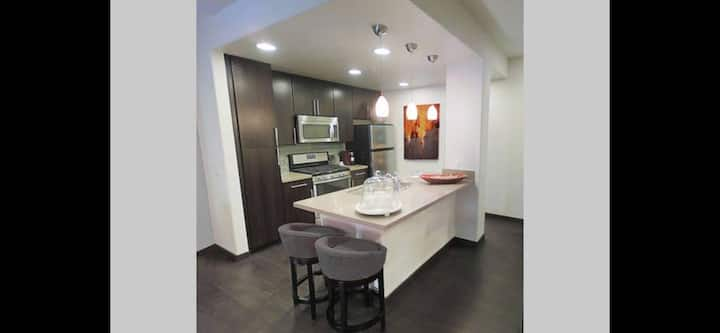 BRAND NEW LUX PENTHOUSE APT - EXTRA LARGE - HWOOD