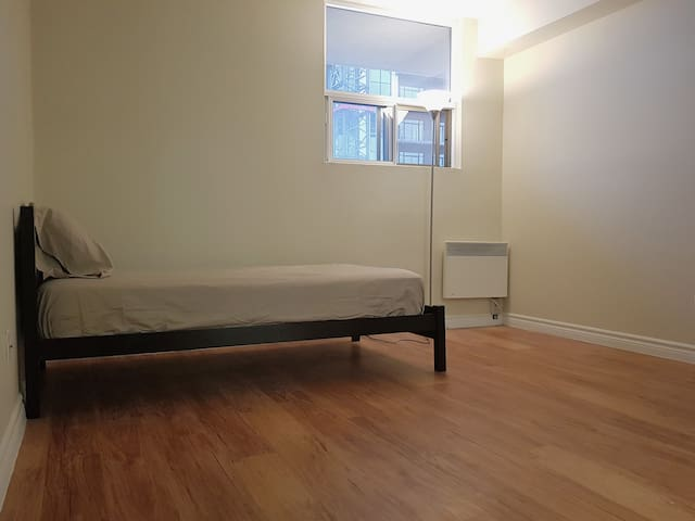 Private room in 2BR apt downtown London