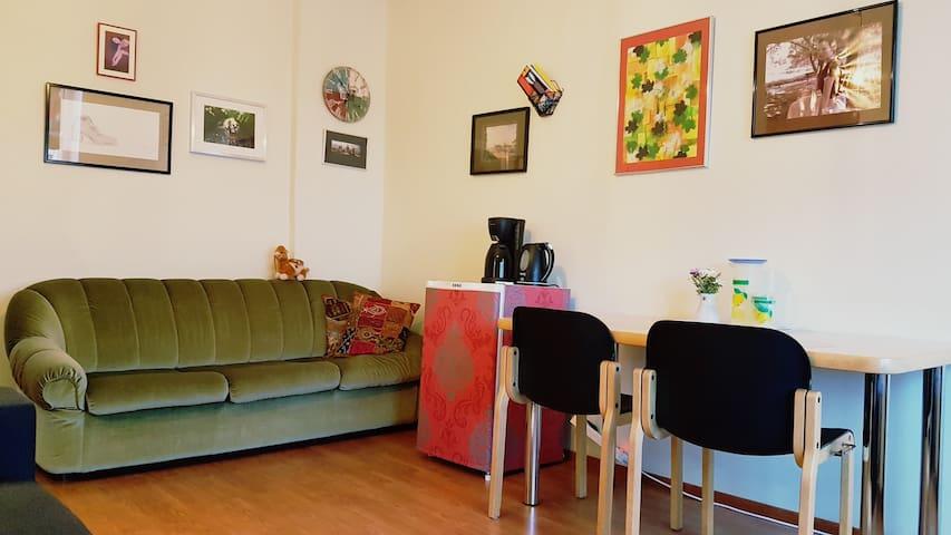 Pull-out sofa, fridge, table