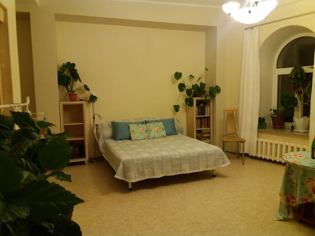 Васильевский остров- комната