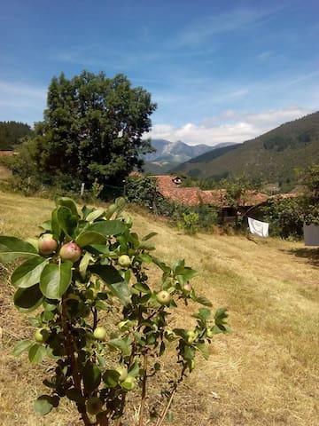 Casa histórica Poblado de Cabariezo (4km de Potes) - Potes
