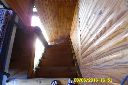 Pietrowy domek z bali na dzilce/One floor loghouse - Casa