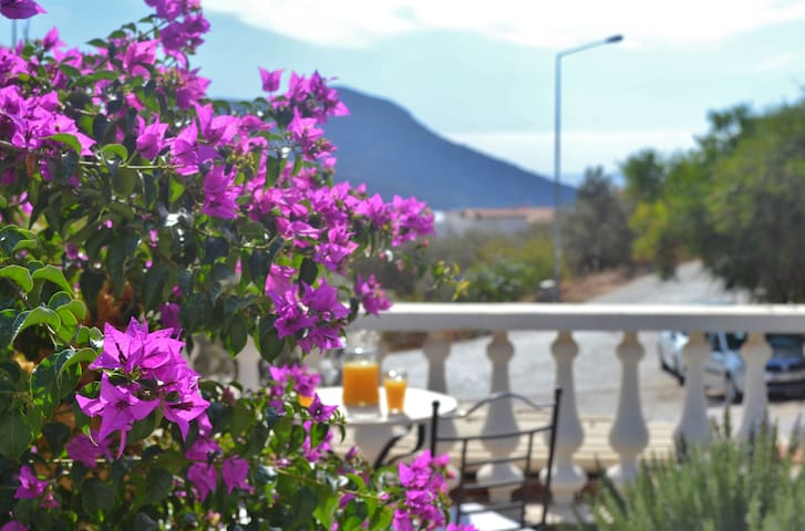 Or in the back garden area (bougainvillea is everywhere in Kalkan)