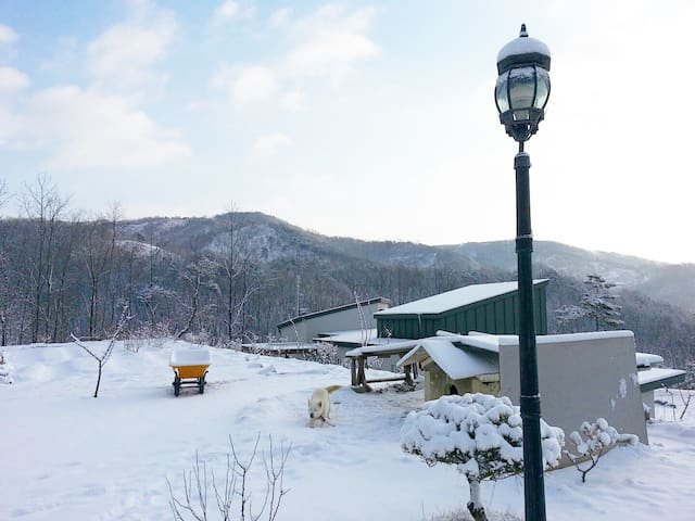 Spacious yard / Baekje Historic Area / Cozy house - Useong-myeon, Gongju-si - House