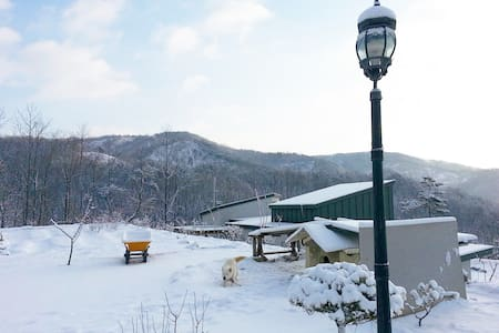 Spacious yard / Baekje Historic Area / Cozy house - Useong-myeon, Gongju-si - 独立屋