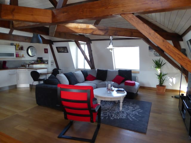 Appartement vue sur rade de Brest - Le Relecq-Kerhuon - Appartement