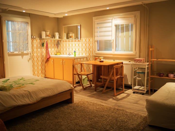 Chambre/SdB privée au calme à 10 min de Grenoble