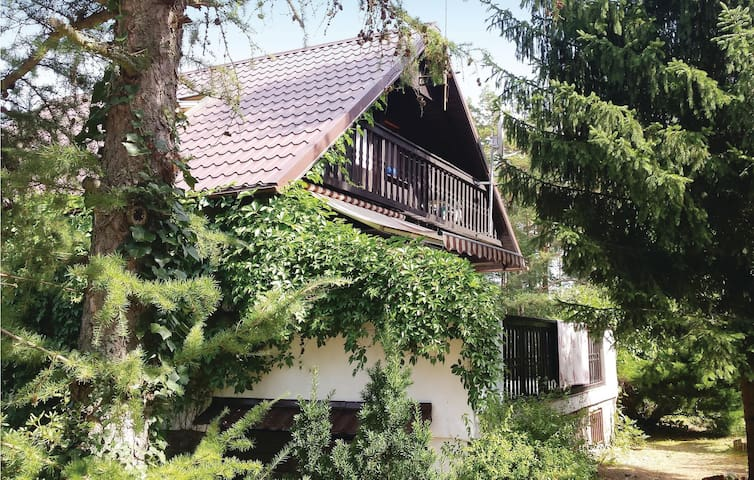 Holiday cottage with 3 bedrooms on 94m² in Dziemiany