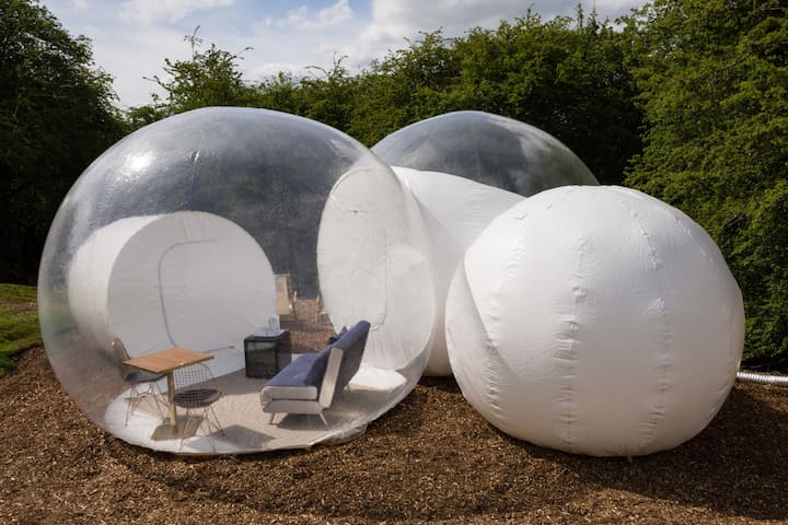Wooded Bubble tent