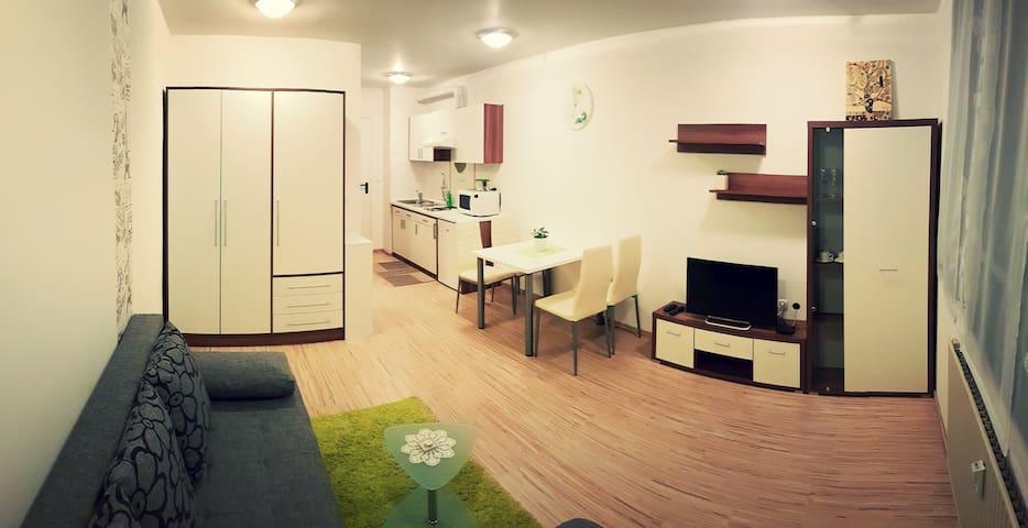 Small but Cosy - Ljubljana - Flat
