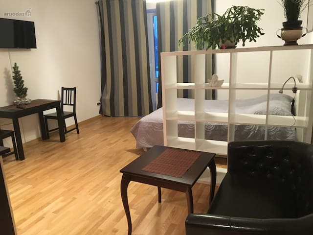 New Studio apartment - Vilnius - Daire