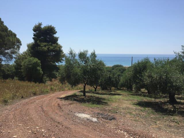 Main road to Vounaki Farm House