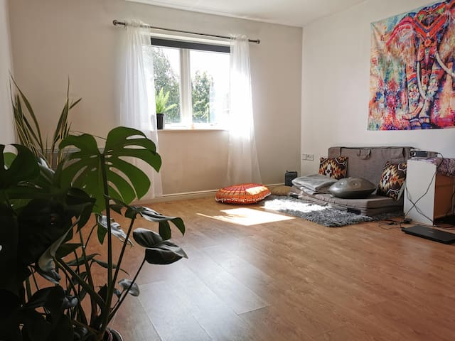 Modern Bohemian apartment / Yoga studio!