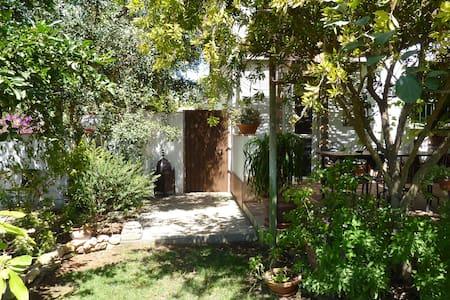 Piso con jardín, patios y terraza - Conil de la Frontera - Apartament