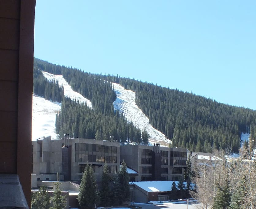 Walk to the Super Bee lift or just enjoy the ski slope, East Village, and mountain views from the deck!
