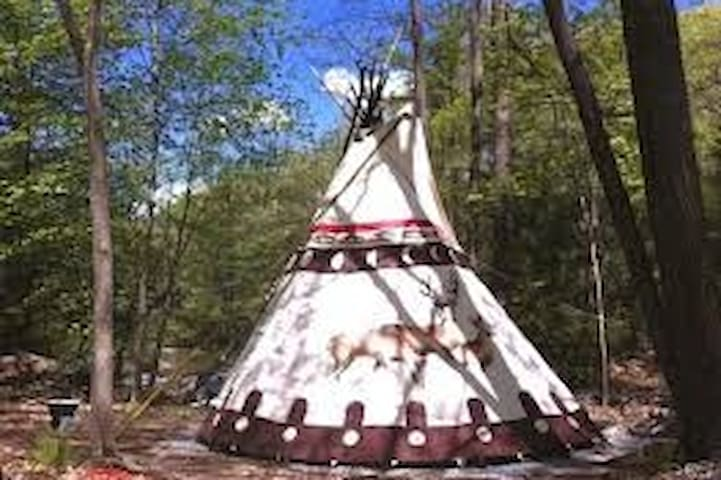 #6 Stunning Ceremonial Native American Tipi
