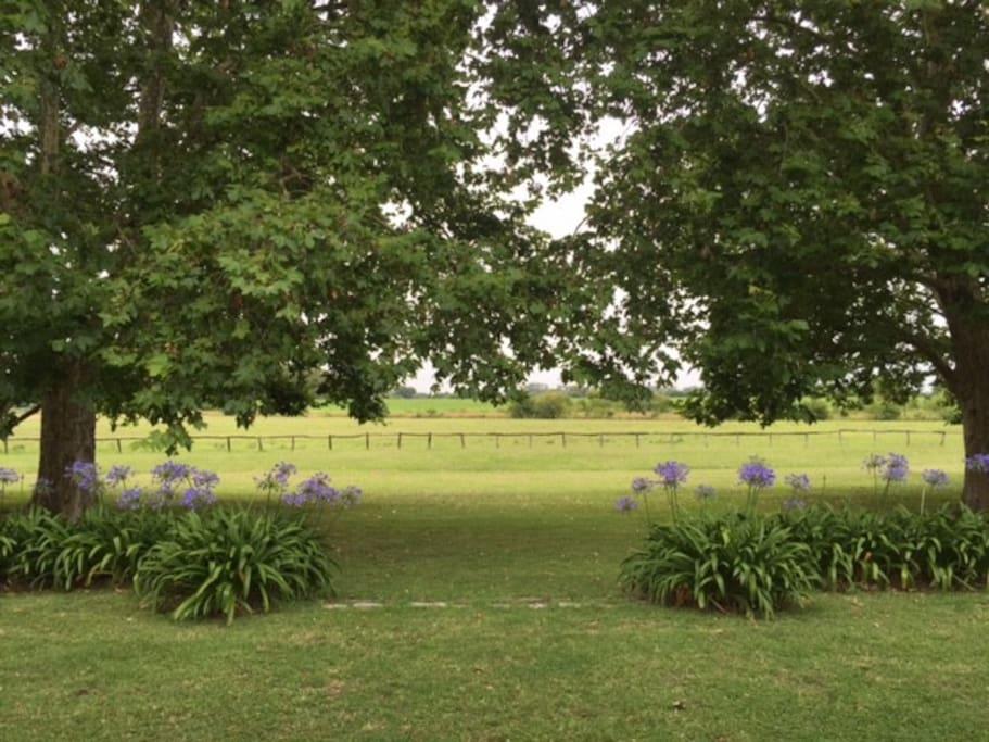 Vista desde la galería hacia el campo abierto y los más lindos atardeceres...