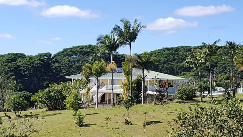 Vacation Retreat at Leleka'ae Water Falls - Hilo - Rumah
