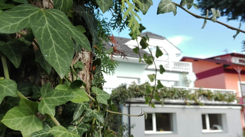 Apartament Ametyst - Jelenia Góra - Pis