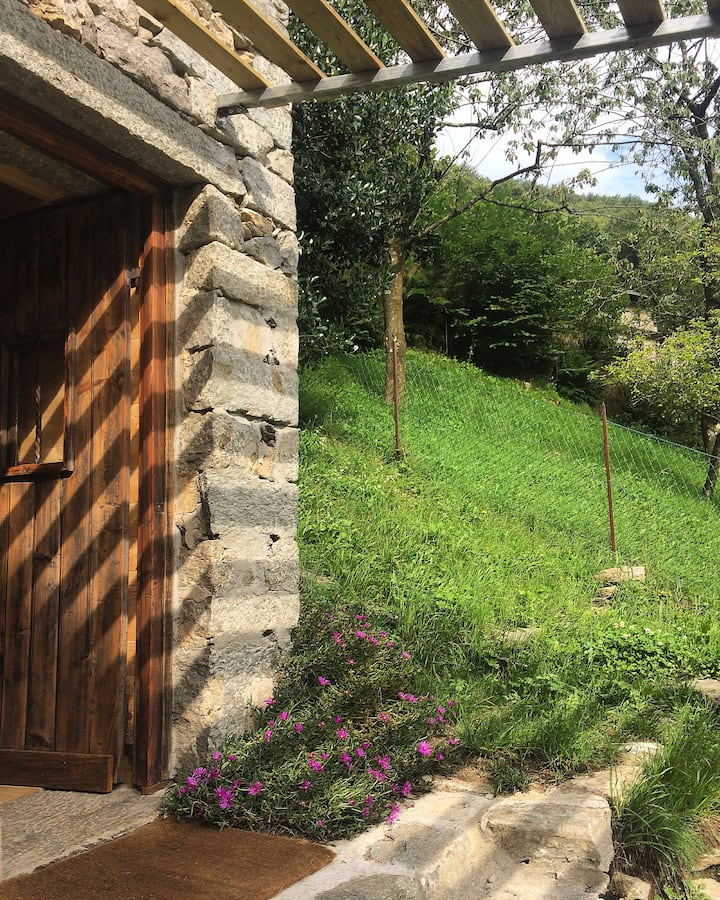 Cabin-Chalet-Tree House-Biella-Panoramica Zegna-IT