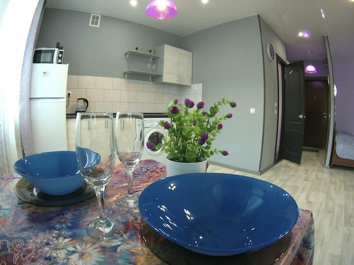 1-комнатная квартира-студия в центре Пионерская 37