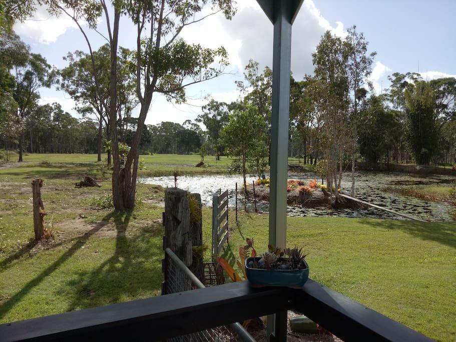 Verandah view of back pond and back fields where kangaroos often graze.