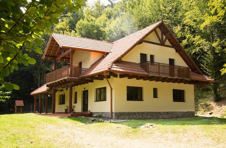 Cabana Căprioara,6 beds Forest Villa, Transylvania