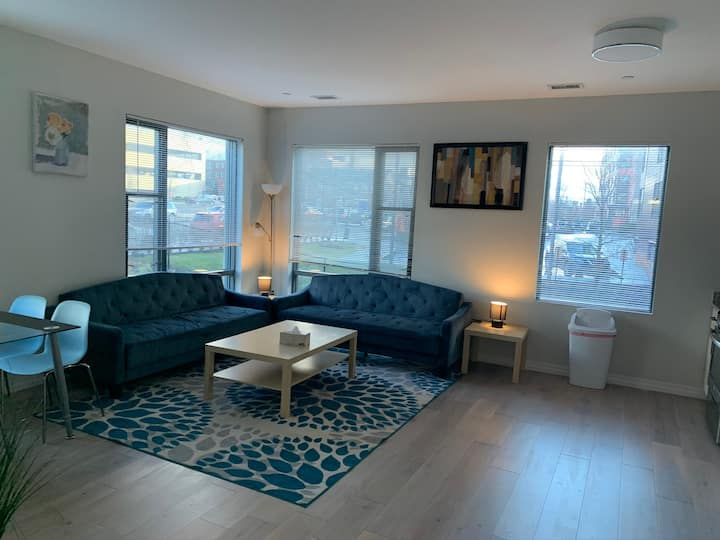 Wonderful 2br apt at Boston's hospitals