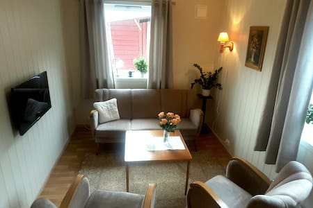Small apartement for 1 person or a couple.