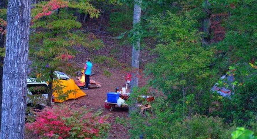 The Ridge @Table Rock: Secluded Primitive Camping