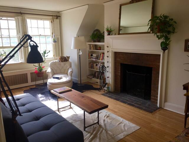 Spacious, light-filled apartment in Palmer Square - Princeton - Apartment
