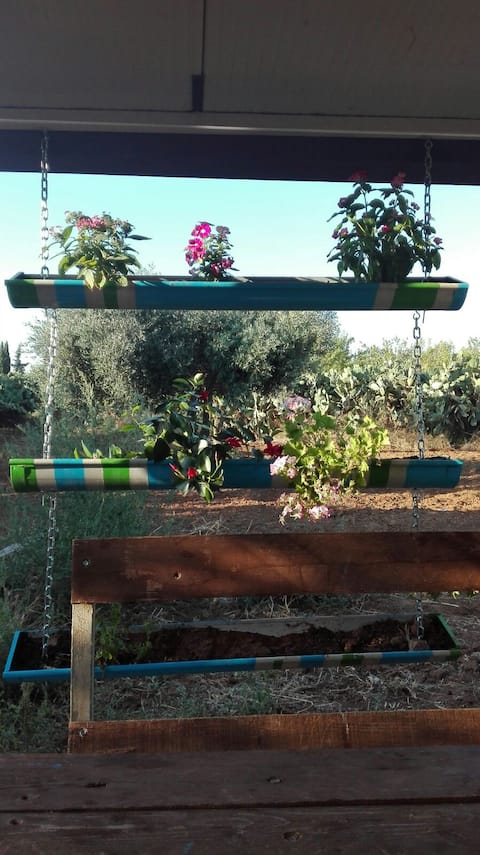 La Casetta in campagna -  a little countryhouse